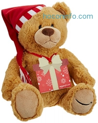 ihocon: Amazon.com Gift Card with GUND Holiday 2017 Teddy Bear - Limited Edition [Prime Member Exclusive]
