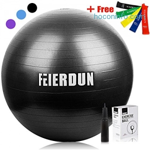 ihocon: FEIERDUN Thick Anti-Burst 55cm Yoga Stability Ball瑜珈/運動球+5條彈性帶