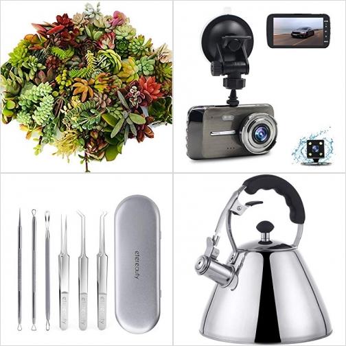 [Amazon折扣碼] 多肉植物(活的), 行車記錄器, 去黑頭粉刺工具組, 笛音煮水壺 額外折扣!