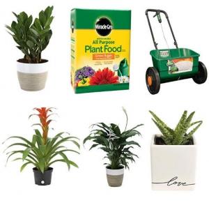 [Amazon今日特賣] 室內, 室外植物及肥料 特價優惠