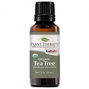 ihocon: Plant Therapy Tea Tree Organic Essential Oil, 100% Pure, USDA Certified Organic有機理療級茶樹精油