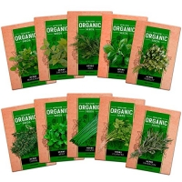 ihocon: 10 Culinary Herb Seed Vault - Heirloom and Non GMO - 3000 Plus Seeds for Planting for Indoor or Outdoor Herbs Garden, Basil, Cilantro, Parsley, Chives, Thyme, Oregano, Dill, Marjoram, Mint, Tarragon 有機菜籽 10包