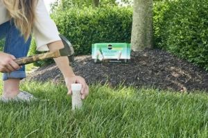 ihocon: Miracle-Gro Tree & Shrub Fertilizer Spikes - 12 PK 樹及灌木肥料釘