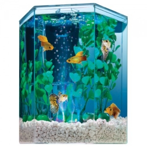 ihocon: Tetra 29040 Hexagon Aquarium Kit with LED Bubbler, 1-Gallon 水族箱