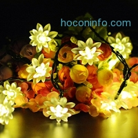 ihocon: Aluvee Solar String LED Lights