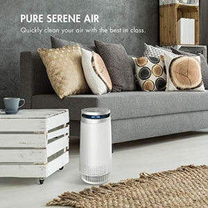 ihocon: Tenergy Renair Ionizer Air Purifier, True HEPA Filter, Ultra Quiet Air Cleaner空氣淨化器/空氣清淨機