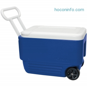 ihocon: Igloo 38-Quart Wheelie Cool Cooler