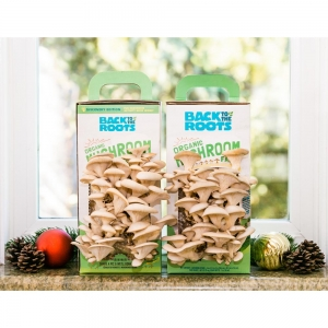 ihocon: Back to the Roots Organic Mushroom Grow Kit -Discovery Edition (2-Pack) 返回到根有機蘑菇養殖包-2個