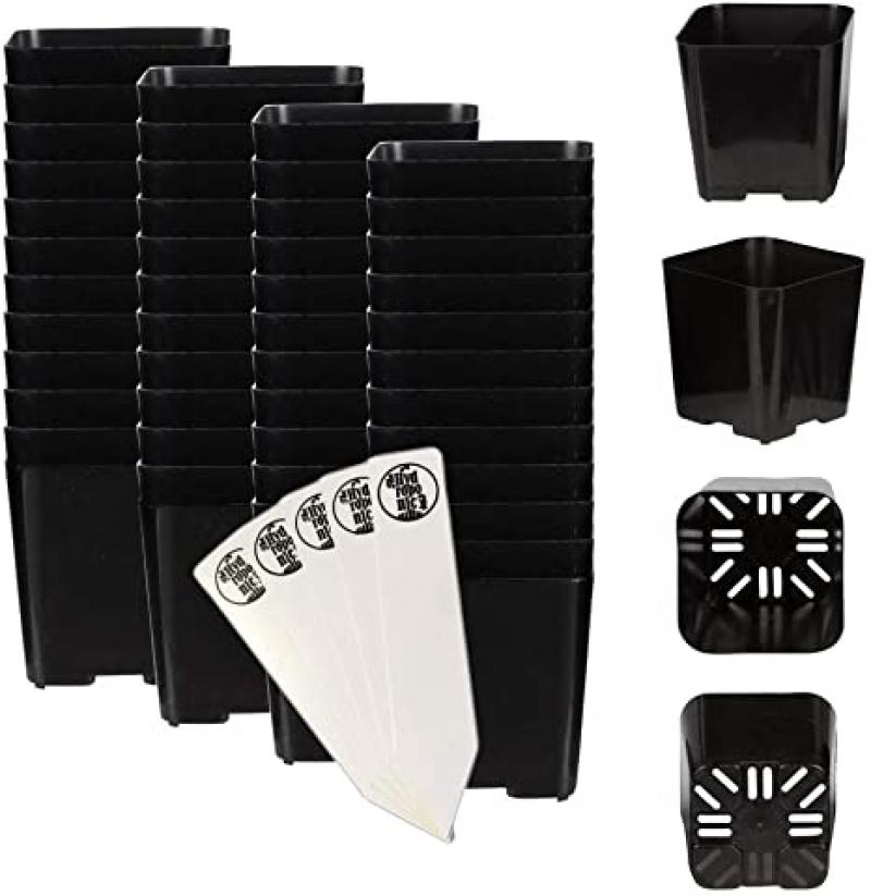 ihocon: 2 x 2 Black Square Plastic Pots, Pack of 48 + THCity Stakes 花盆