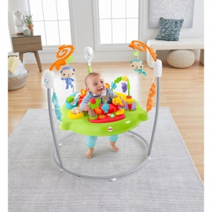 ihocon: Fisher-Price Tiger Time Jumperoo with Music, Lights & Sounds 遊戲椅