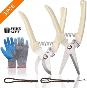 ihocon: Baffsan 3 Pcs Garden Shears Set園藝修枝剪2把及手套