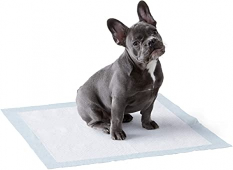 ihocon: Amazon Basics Dog and Puppy Leak-proof 5-Layer Potty Training Pads with Quick-dry Surface 寵物尿墊50張