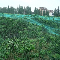 ihocon: NKTM Garden Plant Netting Protect Against Birds, Deer and Other Pests 13 Ft x 32.8 Ft 蔬果防鳥網