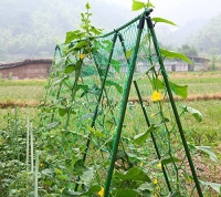 ihocon: NKTM Vegetables and Fruits Nylon Trellis Net,5.9Ft x 11.8Ft 植物攀爬網