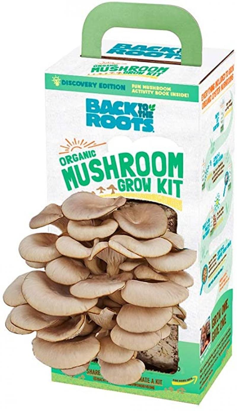 ihocon: [十天可收獲] Back to the Roots Organic Mushroom Growing Kit 有機蘑菇種植包