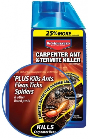 ihocon: Bayer Advanced 700310 Carpenter Ant and Termite Killer Plus Concentrate, 40-Ounce 木匠螞蟻,白蟻,蜘蛛,跳蚤..等濃縮殺蟲劑