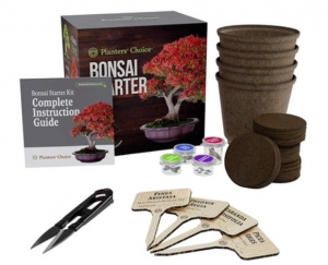 ihocon: Planters' Choice Bonsai Starter Kit - The Complete Kit to Easily Grow 4 Bonsai Trees 盆景入門套件