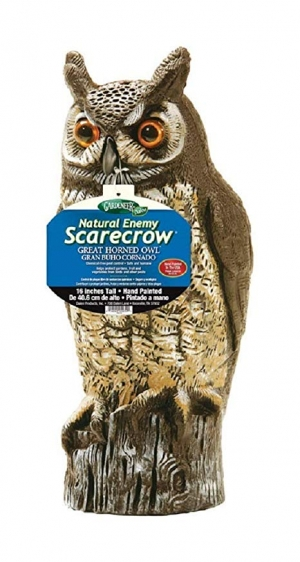 ihocon: Dalen 016069000301 OW6 Gardeneer by Natural Enemy Scarecrow Horned Owl 庭園嚇鳥猫頭鷹