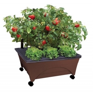 ihocon: EMSCO GROUP 20-in W x 24-in L x 10-in H Earth Brown Resin Raised Garden Bed 高架花床