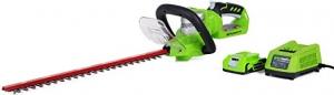 [新低價] Greenworks 22吋 24V 無線修樹枝器, 含電池 $39.74免運(原價$57.13)