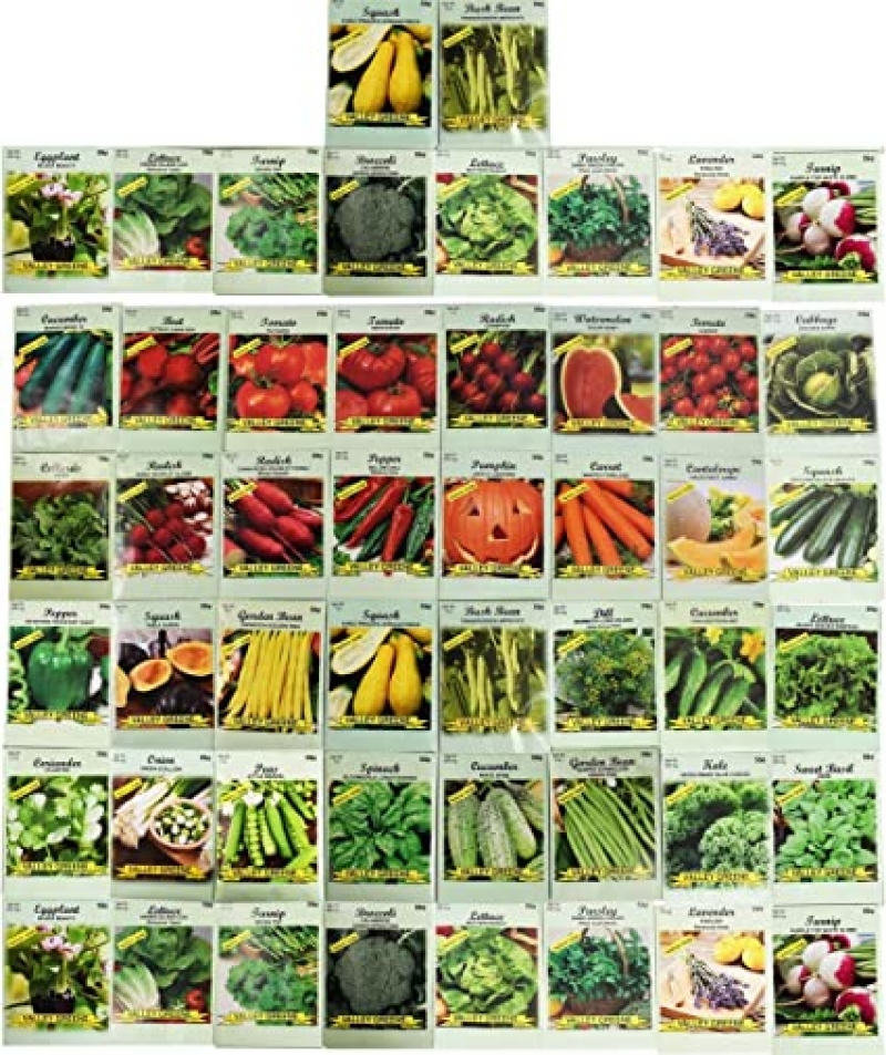 ihocon: 50 Packs Assorted Heirloom Vegetable Seeds 20+ Varieties All Seeds are Heirloom, 100% Non-GMO 50包蔬菜種子