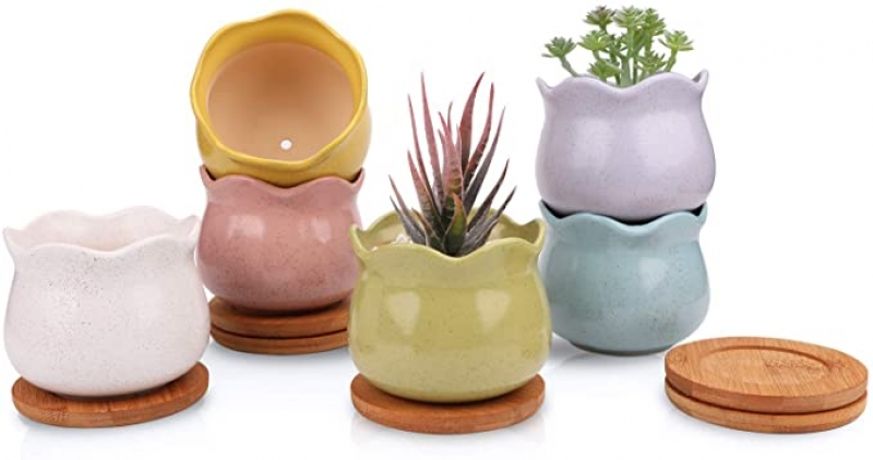ihocon: Ufrount Ceramic Succulent Planter Pot with Drainage, Set of 6 (6 Colors)  陶瓷花盆6個, 含水盤